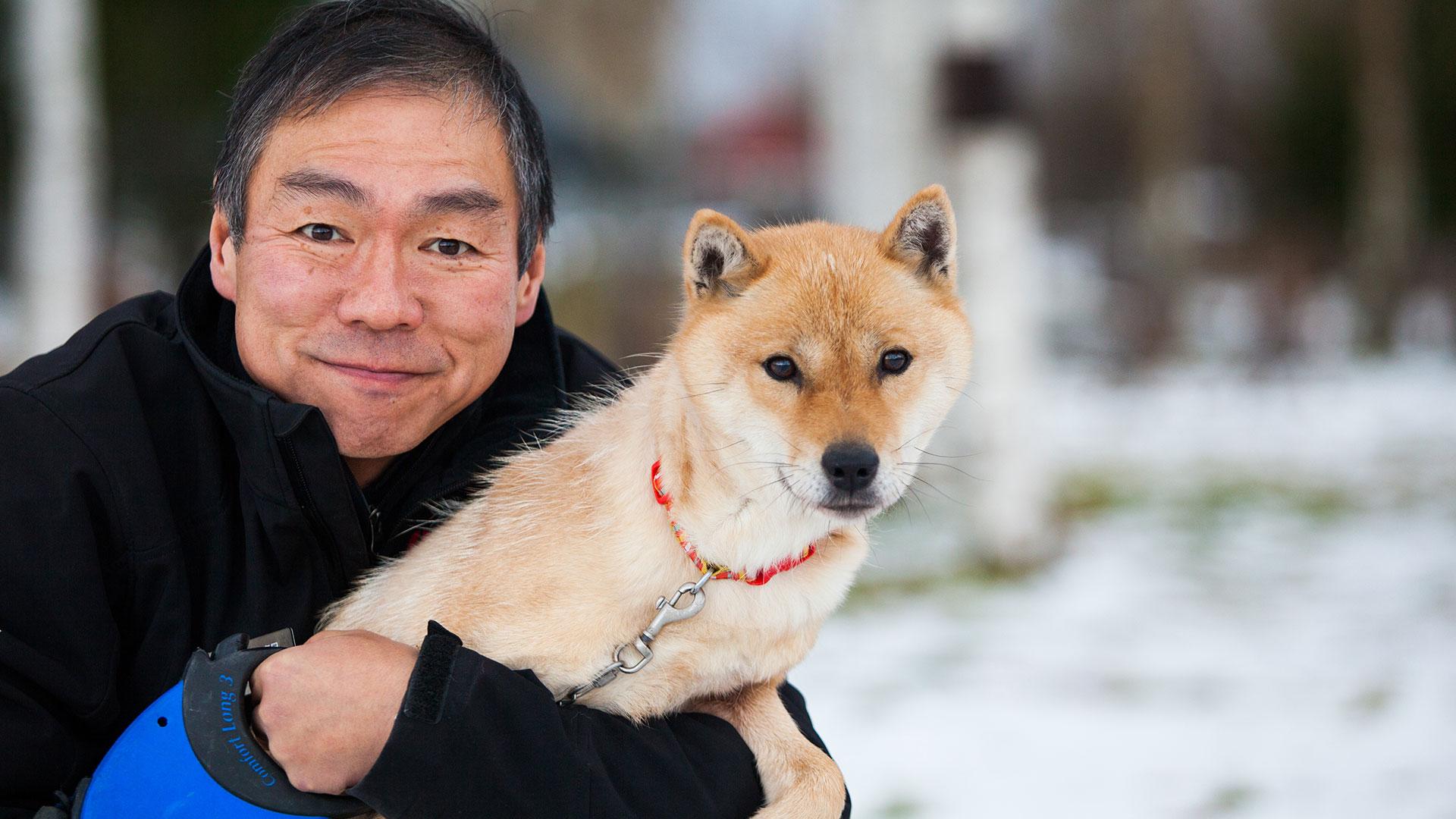 The Hokkaido Dog - Niseko com