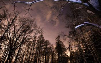 night-trekking