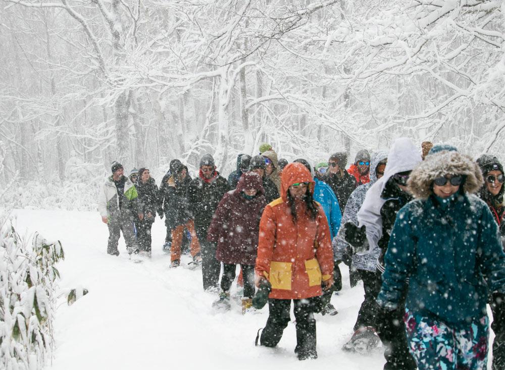 Niseko Snowshoe - Walking in Snow